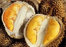 voyage-vietnam-decouverte-degustation-de-fruit-exotique-durian