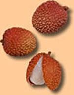 voyage-vietnam-decouverte-degustation-de-fruit-exotique-litchi-letchi