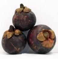 voyage-vietnam-decouverte-degustation-de-fruit-exotique-mangoustan