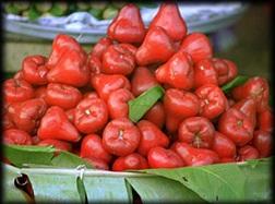 voyage-vietnam-decouverte-degustation-de-fruit-exotique-pomme-d'-amour