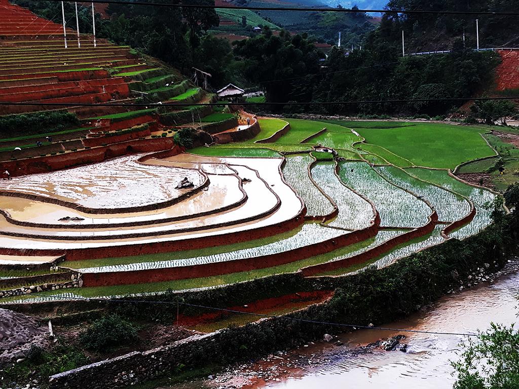 Toute la beauté du Vietnam